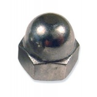 Stainless Steel Cap Nuts