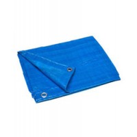 Poly Tarp Cover Blue 8X10