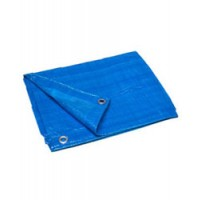 Poly Tarp Cover Blue 10X20
