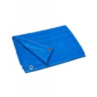 Poly Tarp Cover Blue 25X40